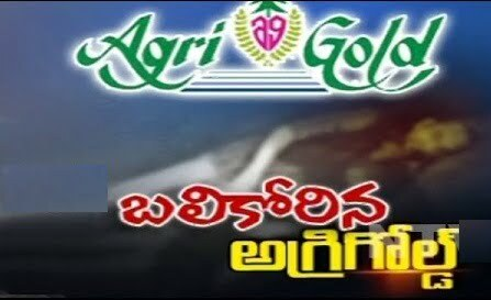 Distribution of Rs.263 Cores to Agri gold victims latest news